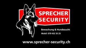 Sprecher Security